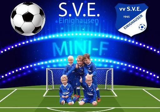 logo2-sve-minif